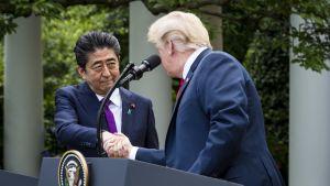 Japanin pääministeri Washingtonissa