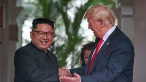 Pohjois-Korean Kim Jong-un ja Yhdysvaltain Donald Trump