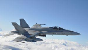 Boeing F/A-18 C/D Hornet.