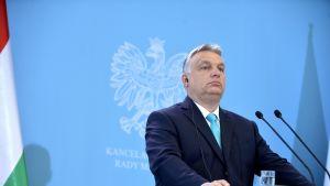 Pääministeri Viktor Orbán