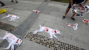 Eläinoikeusaktivisti osoitti mieltään koiranlihan syömisen vastaisessa demonstraatiossa Soulissa.