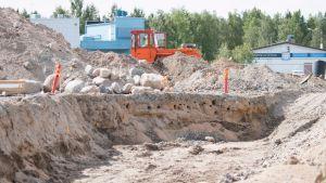 Vieressä kulkevat työkoneet ja rakennustyömaan äänet eivät häiritse lintuja, pesimäalue on rajattu keskelle työmaata.