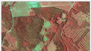 Satelliitikuva metsästä.