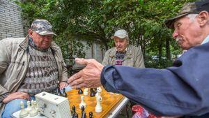 Kolme eläkeläismiestä pelaa shakkia puistossa.