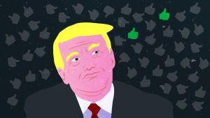 Donald Trump tutkimus