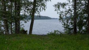Kuopion Neulalahden järvimaisemaa.