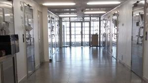 Riihimäen vankilan eristysosaston käytävä.