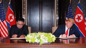 Kim Jong-un ja Donald Trump huippukokouksessa Singaporessa kesäkuussa 2018.