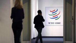 Maailman kauppajärjestö WTO:n päämaja sijaitsee Genevessä.