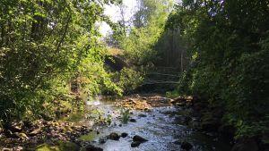 Kaarankajoki Lapualla kesällä 2018