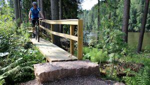 Pyöräilijä Kymijoen ulkoilureitillä