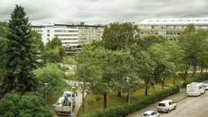 Mannerheiminpuisto peruskorjataan ympärivuotiseksi tapahtumapuistoksi.