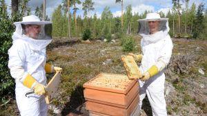 Kia Hynnä ja Reko Nieminen mehiläispesällä Hikiällä.