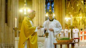 katolilainen arkkipiispa
