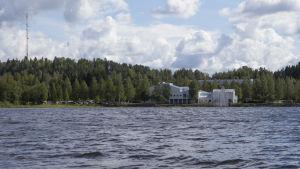 Savilahden ranta järveltä päin.