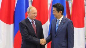 Putin ja Abe tapasivat Vladivostokissa.