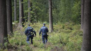 Kaksi poliisia kulkee maastossa.