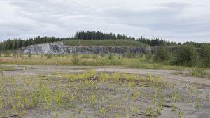 Alue, johon suunnitteilla Finnpulpin tehdas.