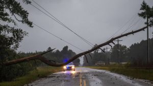 Myrskyn katkaisema tie Etelä-Carolinassa.