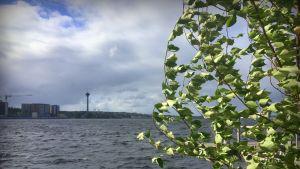Näsijärvi tuulisena päivänä