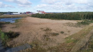 Mäntyluodon telakka, Fortumin tuhkajalostamo ja tuulivoimaa Meri-Porissa