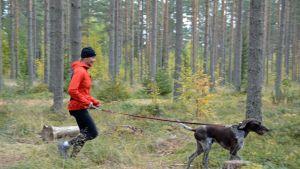 Teija Polso juoksee metsässä Vinku-koiransa kanssa.