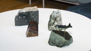 kivi keräily