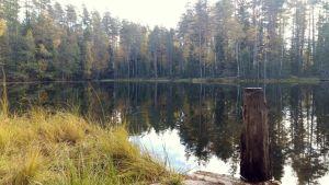 Syrjänalusen nuotiopaikan järvimaisemaa Lammin Evolla Hämeenlinnassa