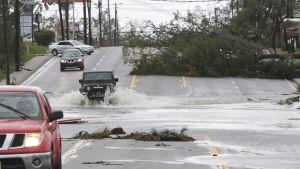 Hurrikaani Michaelin tuhoja Panama Cityssä.