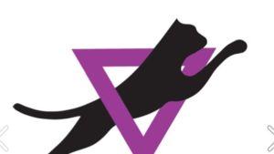 Catzin logo