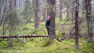 Nainen katsoo puun takaa metsässä.