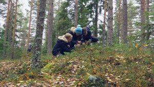 Lapsia metsässä valokuvaamassa maastoa