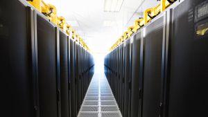 Mustankeltainen serverihuone. Tietokoneiden servereitä.