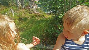 Lapsia nurmikolla.