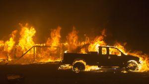 Auto palo Paradisen kaupungissa, jonka kerrotaan tuhoutuneen maastopaloissa käytännössä kokonaan.