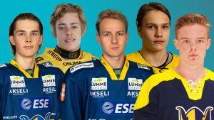Kuvamuokkaus, jossa jääkiekkoilijat Henri Nikkanen, Leevi Aaltonen, Mikko Kokkonen, Veikka Hahl ja Eetu Randelin.