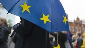 Keltaisia eu-tähtiä sateenvarjossa.