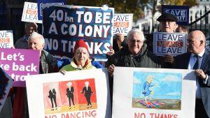 EU-eroa kannattavia mielenosoittajia Downing Streetillä