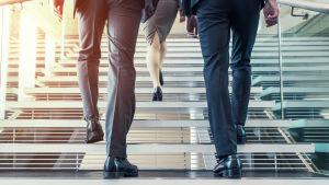 Nainen edessä ja kaksi miestä taaempana puvut päällä nousevat portaita ylös.