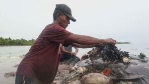 Wakatobin kansallispuiston työntekijät löysivät maanantaina 9,5-metrisen kuolleen kaskelotin läheltä Kapotan saarta.
