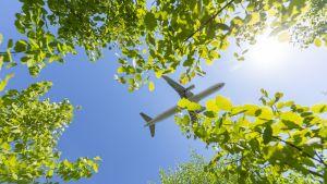Lentokone laskeutuu Helsinki-Vantaan lentokentälle.