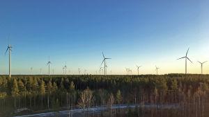 Tuulivoimaloita Kalajoen Miilukankaalla 20.11.2018.