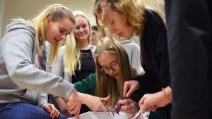 Hanna Mononen ja muut 9A-luokan oppilaat tutustuvat munuaisen anatomiaan turkulaisessa Luostarivuoren koulussa.