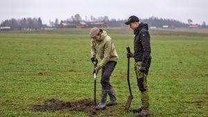 Juuso Joona ja Antti Lähde tutkivat maaperää pellolla kaivamalla sitä lapiolla.