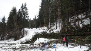 Vuosi sitten Oberstdorfin sprintti jouduttiin perumaan ukkosmyrskyn takia.