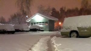 Mäyräkoira tarpoo lumen keskellä.