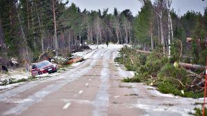 Kaatuneita puita ja autoja ojassa Aapeli-myrskyn jäljiltä Södersundassa, Jomalan kunnassa Ahvenanmaalla 2. tammikuuta 2019.