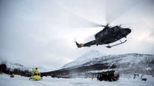 Etsintähelikopteri työssään 4. tammikuuta.