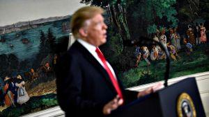 Yhdysvaltain presidentti Donald Trump pitämässä tiedoitustilaisuutta Valkoisessa talossa.
