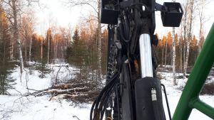 Hakkuukone metsässä.